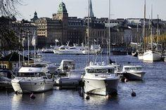 Nybroviken by Look at the Birdie!, via Flickr