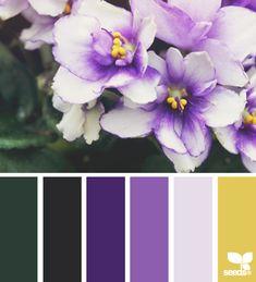 flora hues - voor meer kleurinspiratie en kleurentrends check ook http://www.wonenonline.nl/interieur-inrichten/kleuren-trends-2014/ eens