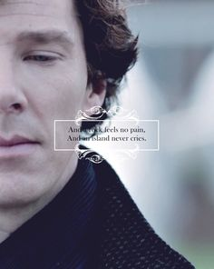 Sentiment is a chemical defect. Sherlock Holmes Quotes, Sherlock Holmes Benedict, Sherlock Series, Sherlock Fandom, Sherlock John, Benedict Cumberbatch, Sherlock Season 5, Dark Quotes, Science Humor