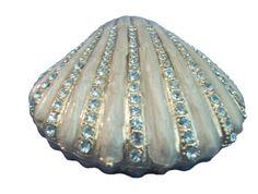 pretty shell compact, ill be sure to make a project out if this:] Mermaid Pose, Mermaid Shell, Mermaid Mythology, Mermaid Drawings, Pandora Jewelry, Under The Sea, Girly Things, Sea Shells, Aqua