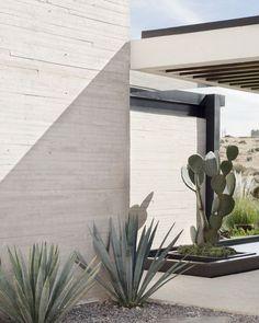 Easy Desert Landscaping Tips That Will Help You Design A Beautiful Yard Modern Landscaping, Front Yard Landscaping, Landscaping Plants, Landscape Design, Garden Design, Indoor Gardening Supplies, Modelos 3d, House Plants Decor, Desert Homes