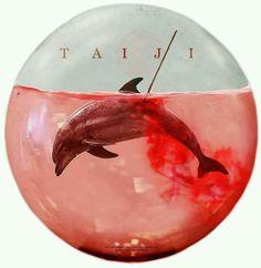 shut down taiji