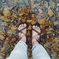 #chaconation • Instagram photos and videos