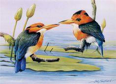 Eric Shepherd.Птицы