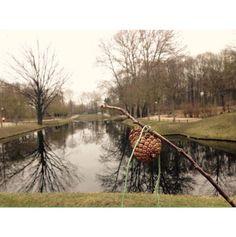 #Tiergarten. Un pal, una pinya, una corda i a jugar. No ens va caldre res més #jugaresesencial #igersberlin #Berlin