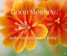 A Smile from an Uplifting Good Morning Image | Birthday Wishes Expert