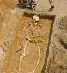 Giant Skeleton 2