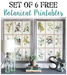 Free Botanical Printables | blesserhouse.com - These are gorgeous!