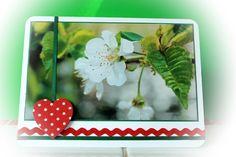 """Fotogrußkarte mit dem Foto """"Kirschblüte"""" für jede Gelegenheit!"""