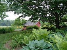 Image result for woodland gardens