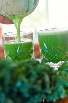 Healing the Gerson Way - Our Green Juice foodmatters. Healthy Juices, Healthy Smoothies, Healthy Drinks, Green Smoothies, Healthy Foods, Juice Fast Recipes, Green Juice Recipes, Natural Metabolism Boosters, Clean Eating Dinner