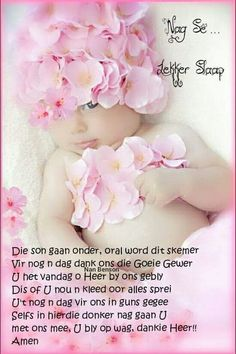 Evening Quotes, Evening Greetings, Afrikaanse Quotes, Good Night Blessings, Goeie Nag, Good Night Quotes, Special Quotes, Qoutes, Sleep Tight
