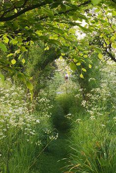 Serenity in the Garden: The Secret Garden - Photo of the Day