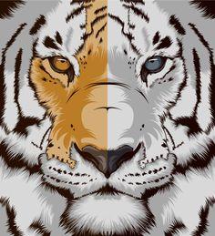 white tigers, vector art, craniodsgn spain, inspiration, art prints, digital art, illustration art, design blogs, eyes