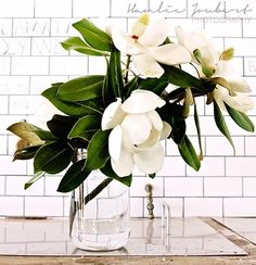 Three reasons why we love Magnolia | One Day Bridal