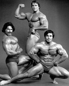 arnold schwarzenegger posing together with franco columbo and ed corney