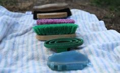 Keep your horse's coat and skin healthy and maximize the life and usefulness of your grooming tools with these grooming tool care tips. | Horse Illustrated