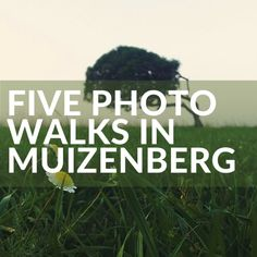 I'm putting together a series on quick photowalks in some of my favourite places in and around Cape Town. First up - Muizenberg. I could also have called this post 'Photo walks in Muizenberg that don't include the beach huts!