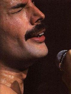 King Freddie - freddie-mercury Photo