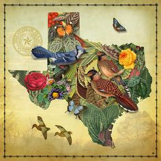Floral Map of Texas ~ Gary Grayson