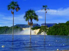 Resultado de imagen de paisajes de venezuela playas