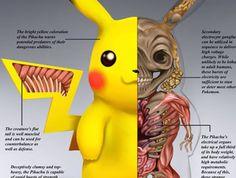 These Anatomically Correct Pokémon Are Pure Nightmare Fuel, PokéNatomy is Terrifying