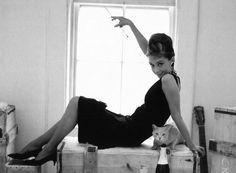 Audrey & Champagne via Miss Crayola Creepy #thesocialnewyear
