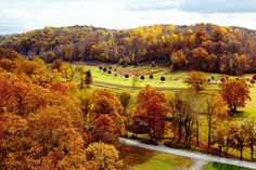 View from the Natchez Trace-Highway 96 bridge in Fall, just south of Nashville. Description from pinterest.com. I searched for this on bing.com/images