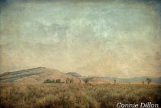 landscape - blue, beige - wyo - hills - sage - sky - fine art photography - Where the Mountains Meet the Plains: 13x19 Color Photograph,