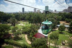 Pretoria Zoo! Must see.