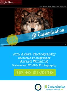 #SmugMug Site of the Week -  #California Jim Akers Photography #Award winning #Nature and#Wildlife photography - click to read more
