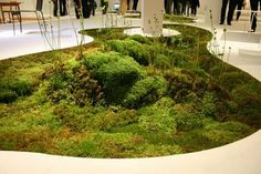 Talking this idea one step further, is this office interior using a biodegradable moss planter. The look is lush and fresh and vastly different from most corporate spaces. This 'bringing the outdoors inside' is an aim that many designers try to achieve, but not necessarily as literally as in the image above.