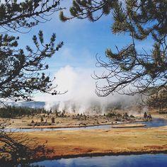 Old Faithful, Wyoming, USA / Yellowstone National Park
