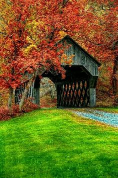 Covered bridge near Chelsea, Vermont bp. Covered bridges are great, If I win the Encore, I would love to take a trip through the countryside and through the covered bridges. Beautiful World, Beautiful Places, Beautiful Pictures, Simply Beautiful, Old Bridges, New England Fall, Autumn Scenes, Fall Pictures, Covered Bridges