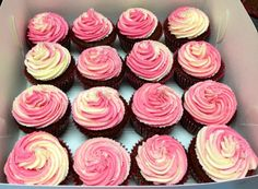 Chocolate cupcakes with pink and white frosting