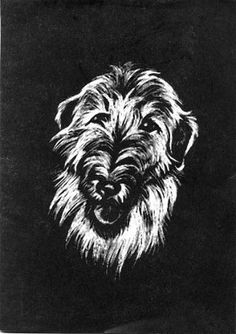 Biggest Irish Wolfhound Ever | Scraperboard pictures by Janet Johnstone, printedas cards in 1972