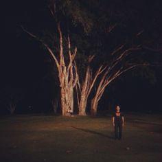 Under the Banyan Tree. - @spinandhita- #webstagram