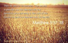 Matthew 9:37-38 - #Harvest #Bible