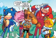Panels, Scenes, and Pages I Love from Archie's Sonic the Hedgehog Comics Sonic Funny, Sonic 3, Sonic And Amy, Sonic And Shadow, Sonic Fan Art, Sonic The Hedgehog, Super Mario Art, Sonic Franchise, Video Game Anime
