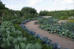 Regenstein Fruit & Vegetable Garden. Why not have an attractive kitchen garden?