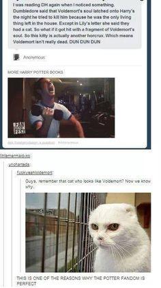 Harry Potter Fandom - This is insane!!!