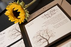 We offer custom design services for your wedding invitations, stationary, paper goods and more. Philadelphia Wedding, Custom Wedding Invitations, Paper Goods, Invitation Design, Service Design, Whimsical, Custom Design, Bride, Cream