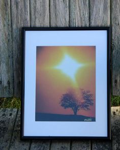 Woods Hole Tree in NEW Black Frame by MuttiArtography on Etsy, $75.50