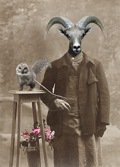 Ray and Pluto - Vintage Ram 5x7 Print - Anthropomorphic - Altered Photo - Whimsical Art - Photo Collage - Funny Animal - Unusual Gift Idea