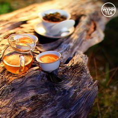 Tea with us became more than an idealization of the form of drinking; it is a religion of the art of life. Teaism was Taoism in disguise. - Okakura Kakuzō  #tea #teaquote #taoism #teaism #artoftea #puer #puerh #sheng #driftwood #healthyliving #afternoontea #organic #relaxing #culture #tealover #teaaddict #religion #teacup #gaiwan #teaware #wymmtea