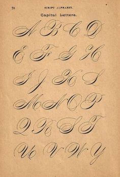 Calligraphy Print Page Capital Letters Ornamental Writing Pen Flourishing flipside Business Alphabet Copperplate Calligraphy, Calligraphy Print, Calligraphy Handwriting, Script Lettering, Typography Letters, Modern Calligraphy, Cursive, Penmanship, Caligraphy