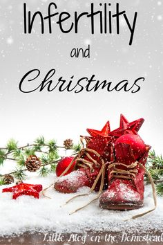 Infertility & My Christmas Wish - http://www.littleblogonthehomestead.com/infertility-christmas/