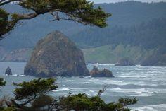 I just love the Oregon coast.