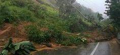 La guanábana