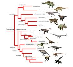 https://www.google.com/search?q=ornithopoda cladogram